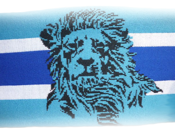 лев зенит картинки